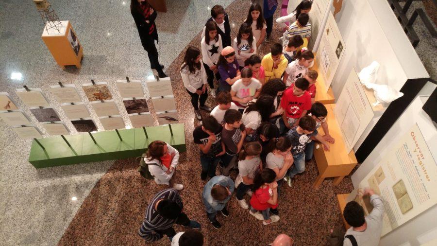 Las exposiciones como vía de educación científica y sensibilización medioambiental, una apuesta de 1234Redes en Peñaranda